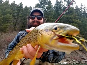 brown trout streamer