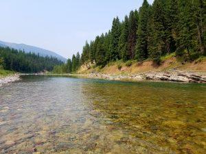 montana fishing rivers