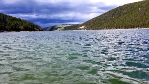 montana reservoir fishing