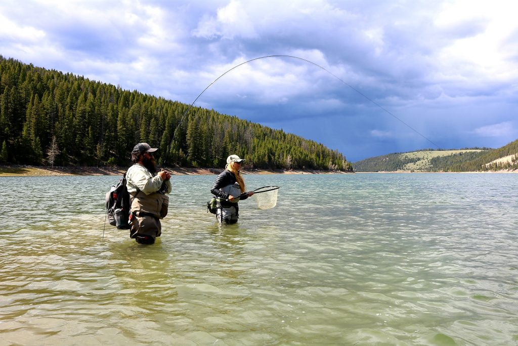 bull trout fly fishing