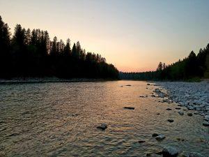 south fork flathead river fishing