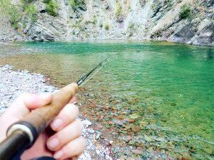 flathead river montana fishing