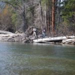bitterroot river fishing