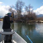 bitterroot river darby montana
