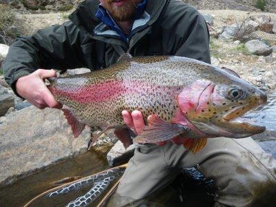 kootenai river fly fishing