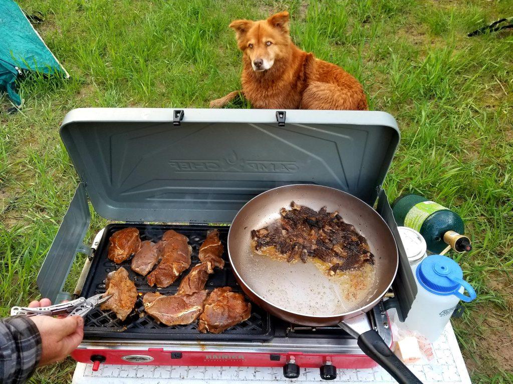 camp chef rainier stove