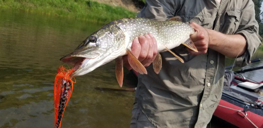 pike fishing flies