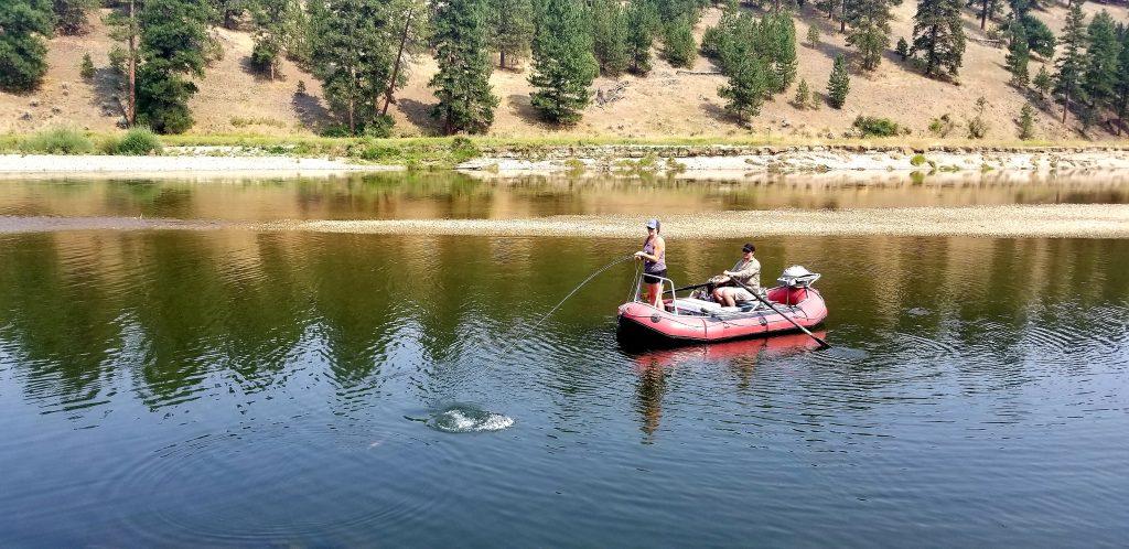 Montana pike fishing