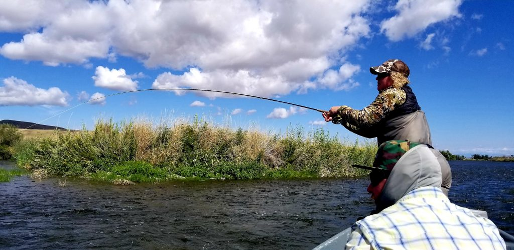 lower madison river fly fishing