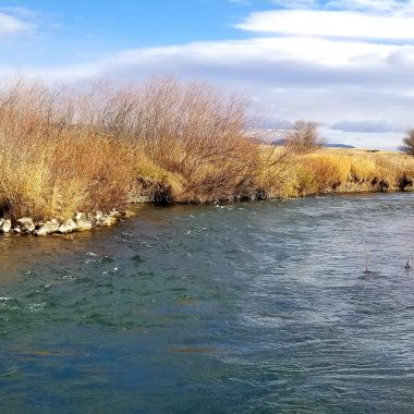 fly fishing big spring creek montana lewistown montana