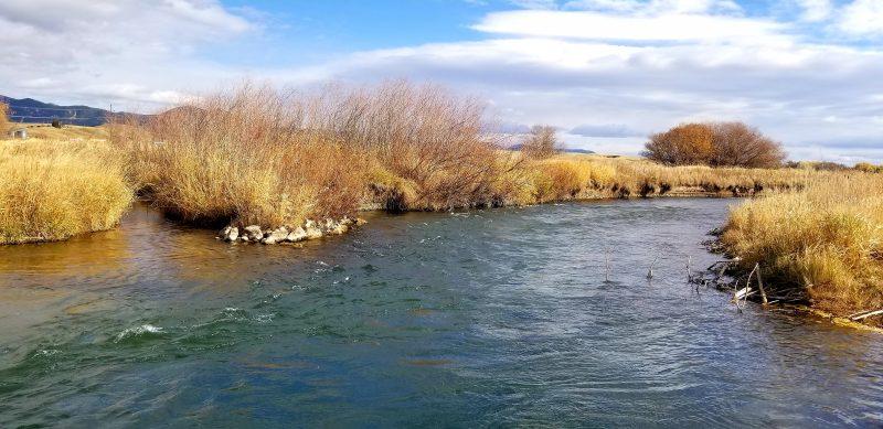 fly fishing big spring creek montana lewistown montana
