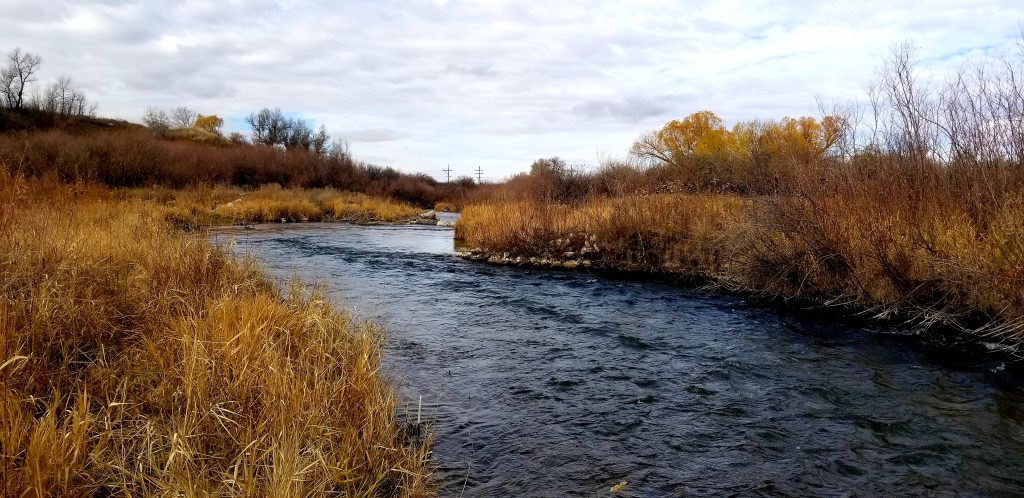 big spring creek montana