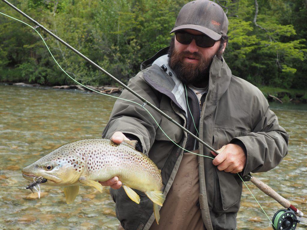 Patagonia brown trout
